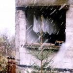 1996 ruini - 08