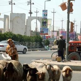 Ирак 2010 г.