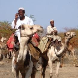 Судан 2010 - 2011
